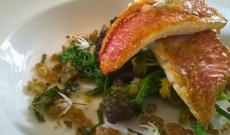 it's fishy friday! try my red mullet with wild garlic